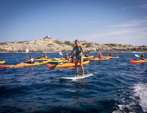 Kayaking & SUP